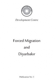 Forced Immigration and Diyarbakir