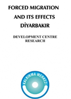 Forced Immigration and Its Effects: Diyarbakir