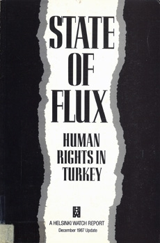 State of Flux: Human Rights in Turkey
